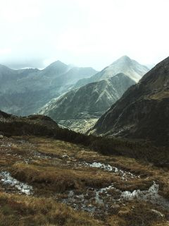 alpen nature landscape mountain austria freetoedit