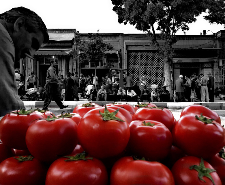 People  tomato Mehrdad mehrpouian  #art #photography #photograph #photorealistic #people #photoart