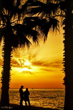 sunset sunsetlovers sunside suncolours orange