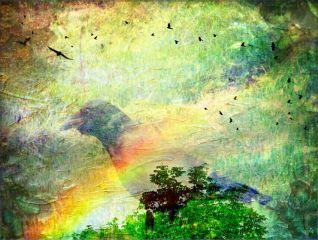 remix nature birds fantasy daydreams