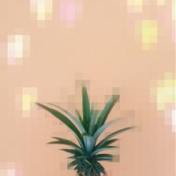 freetoedit interesting art remixed pineapple