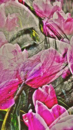 freetoedit edited flowers wapflowerportrait