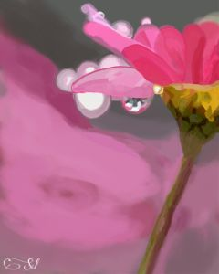 wdpflowerfield flower nature digitaldrawing drawing