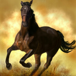 drawing digitaldrawing horse petsandanimals mydrawing
