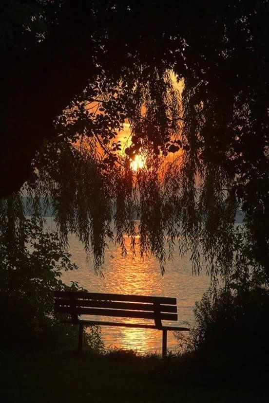 #nature #love #photography #travel  #sunrise#music