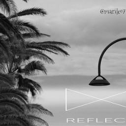 lamp_art clipart blackandwhite palmtrees photoquotes