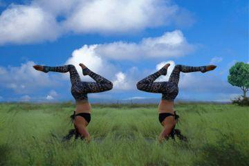 freetoedit remixme yoga clone