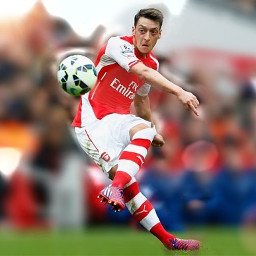 mesutozil1088 people football