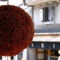 backgroundblur nettesdailyinspiration japan travel