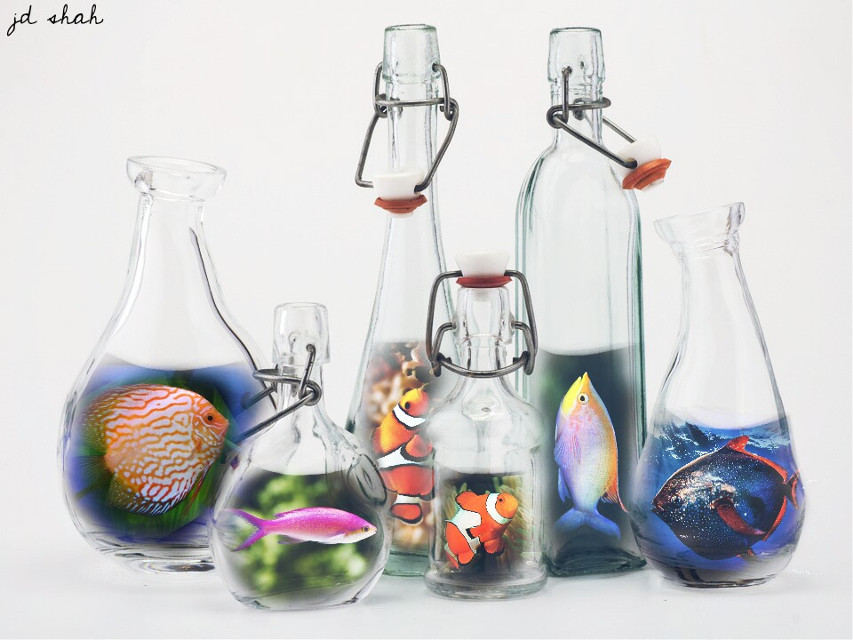 Op:- @freetoedit #remixme  #bottles #fishes #doubleexposure #edited #madewithpicsart