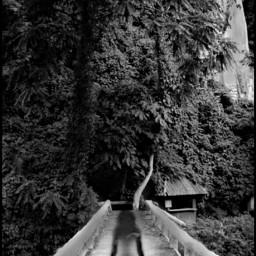 picsart picartist pinterest phusangwaterfallbridge natural