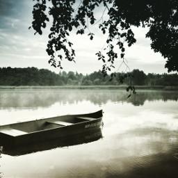 nature summer retro photography