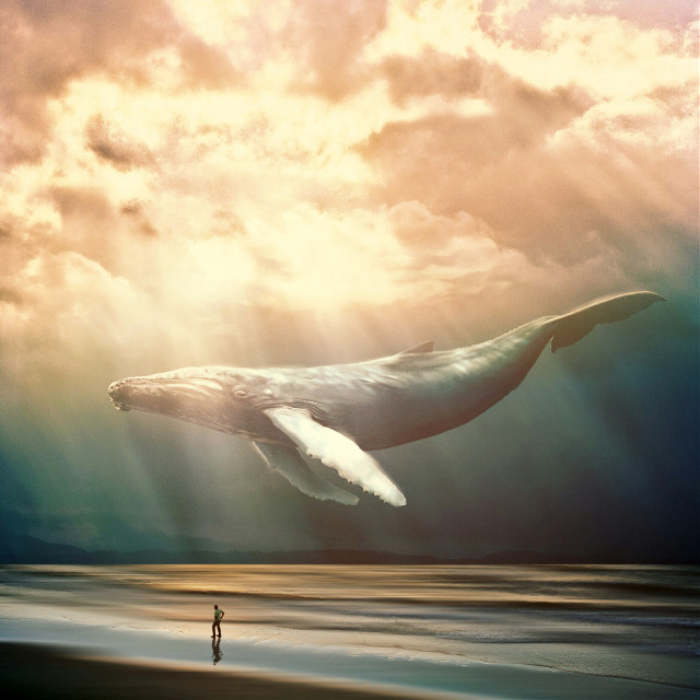 Golden hour.  #whale #golden #surreal #surrealism #edited op: unsplash.com